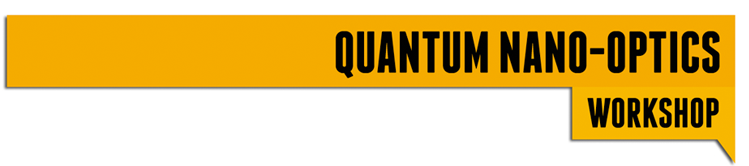 Quantum nano-optics workshops